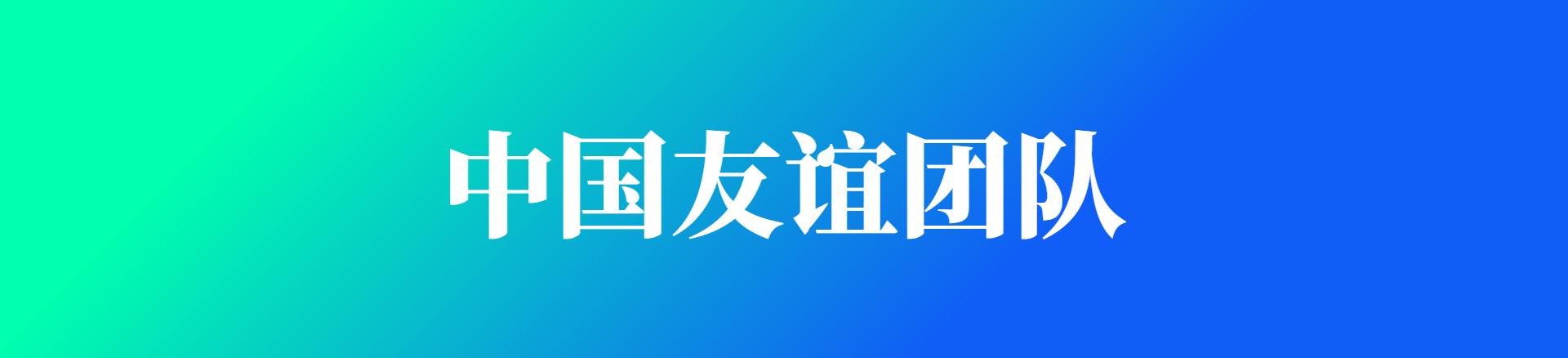 中国友谊团队欢迎图